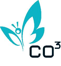 CO3 Business Design